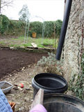 looking west as we prepared the area with five tonnes of top soil