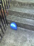 and I found a balloon on my step this morning...