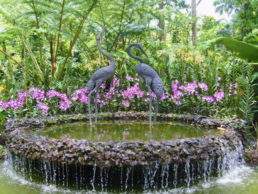 http://moblog.net/media/m/r/c/mrc/singapore-botanic-gardens.jpg