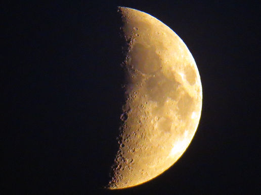 My Fifth Moon Shot