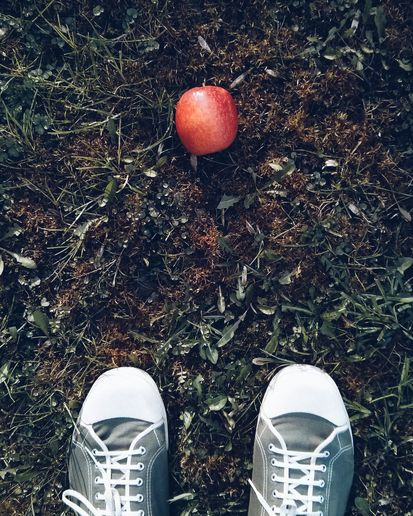 Apple on lawn