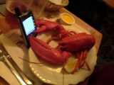 4 out of 5 Lobster dinners prefer the Treo