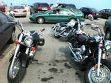 Lots of bikes at the beach
