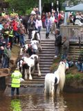 Appleby horse fair