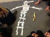 We've labelled our bones