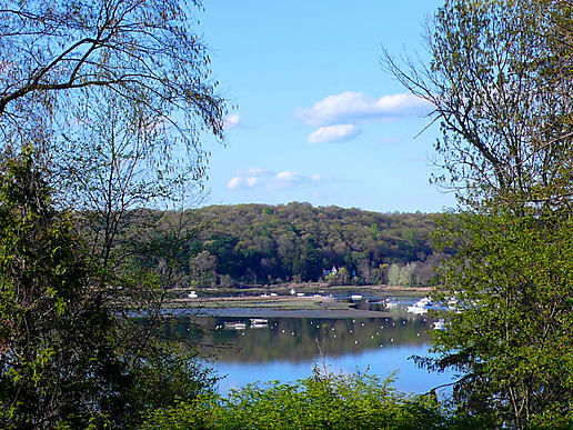 More Cold Spring Harbor