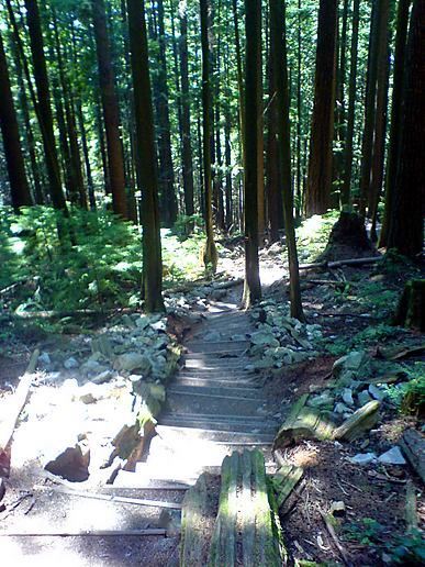 The Grouse Grind (aka the not-so-easy way up)