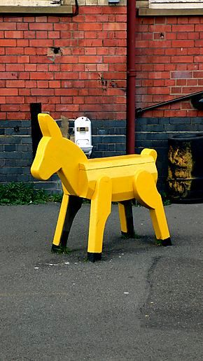 Yellow Donkey