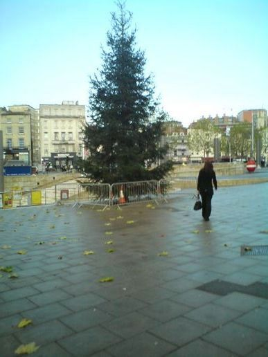 Bristol has its harbour side Christmas tree up, at rhys' moblog