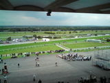Sandown races