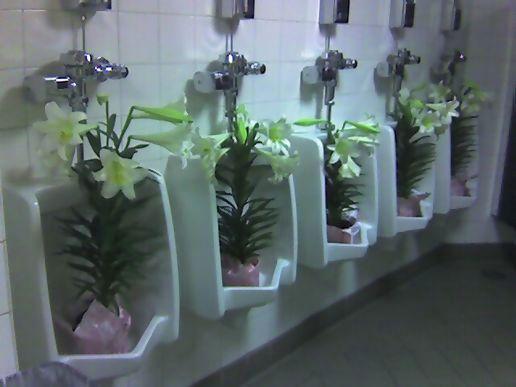 Best bathrooms ever for Best bathrooms ever
