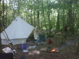 Our woodland home