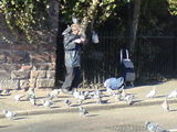 Bird Man of Chester
