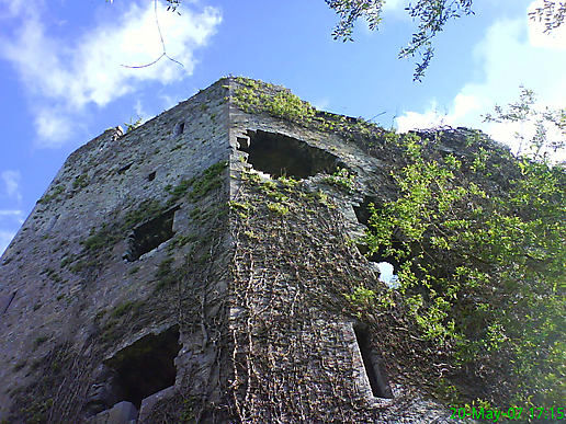 Troy Castle, Co.Limerick, Ireland