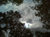 Puddle of sky