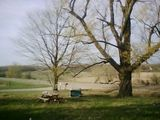The view outside my house :) country love <3