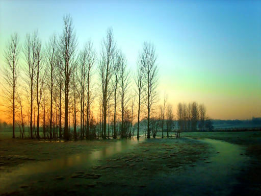 Frozen floods and sunrise scenes