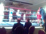 More boxing finals
