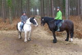 Horseriding in Hurn Forest