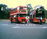 Buses for my Bro