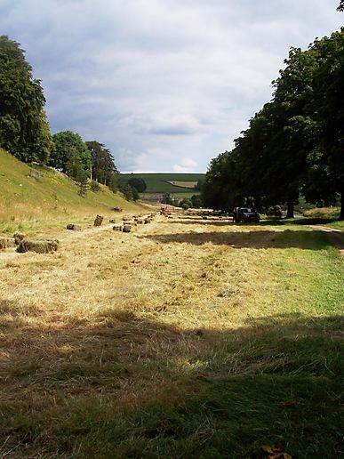 mowed and baled meadow
