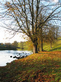 Autumn Wharfedale Oct 25th
