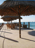 Penultimate morning...