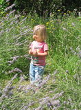 Annie amongst the lavender at Stonebridge City Farm