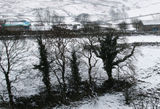 Snow in Wharfedale ...5