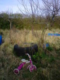 Allotment Junk