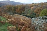 Autumn Colours in Cumbria